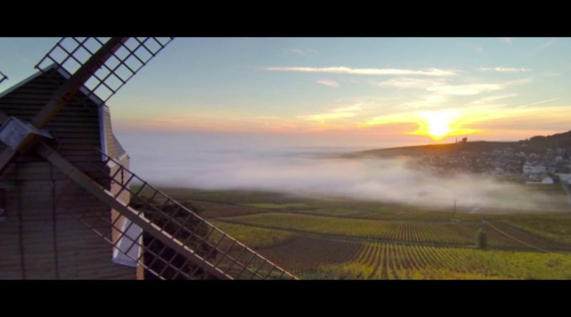 Enjoy A Peaceful Sunrise Over A Vineyard In France