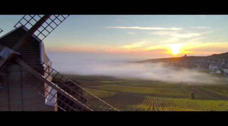 Enjoy A Peaceful Sunrise Over A Vineyard In France
